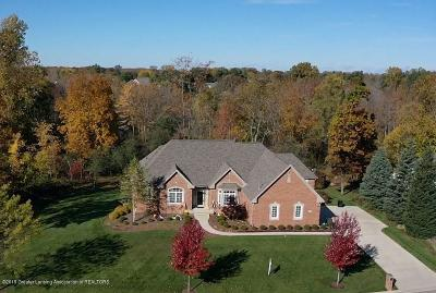 East Lansing Single Family Home For Sale: 6257 E Mereford Court