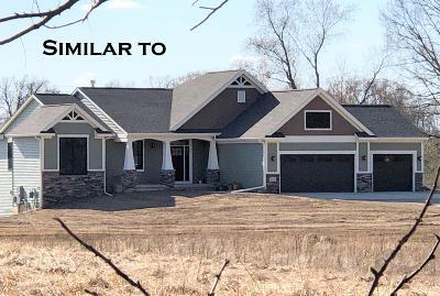 Williamston Single Family Home For Sale: 3148 Pawapi Lane