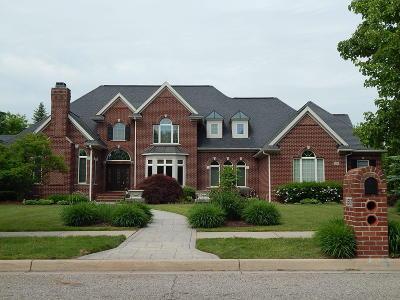 Okemos Single Family Home For Sale: 3587 Autumnwood Lane