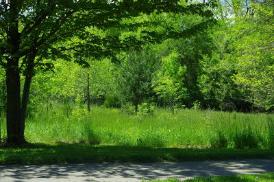 Okemos Residential Lots & Land For Sale: Dobie
