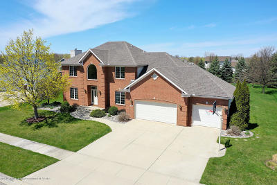 Grand Ledge Single Family Home For Sale: 911 Woodbury Drive