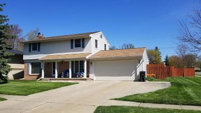 Lansing Single Family Home For Sale: 4604 Norwick Street
