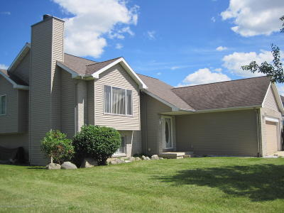 Lansing Single Family Home For Sale: 3212 Preakness Way