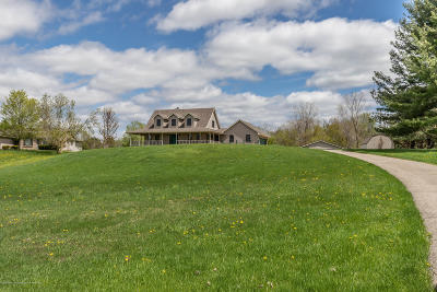 Lansing Single Family Home For Sale: 15677 S Airport Road