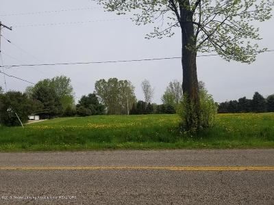 Charlotte Residential Lots & Land For Sale: Vl Packard Highway