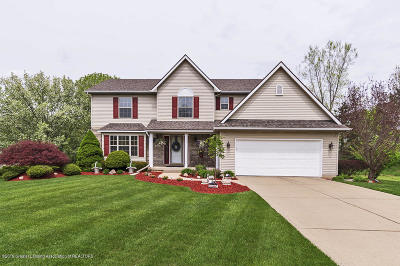 Lansing Single Family Home For Sale: 3111 Ivywood Court