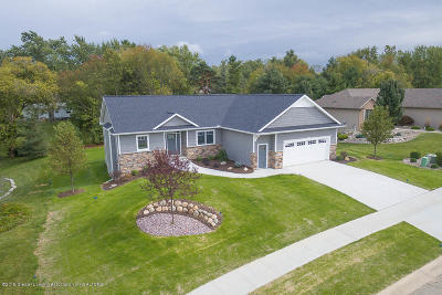 Grand Ledge Single Family Home For Sale: 805 Greenwich Drive