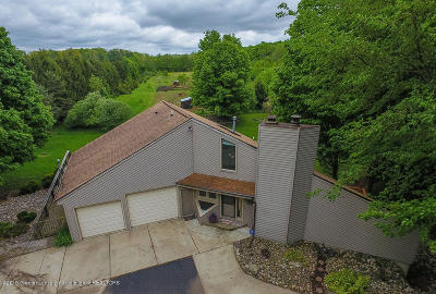 Mason Single Family Home For Sale: 175 Gale Road