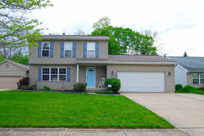 Lansing Single Family Home For Sale: 1925 Mulholland Drive