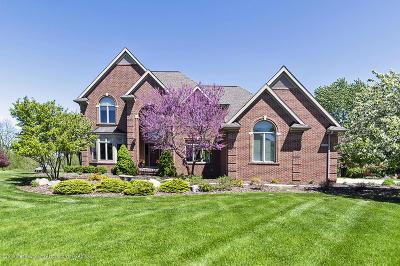 Okemos Single Family Home For Sale: 3582 Cabaret Trail