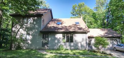 Haslett Single Family Home For Sale: 9725 Lansing Road