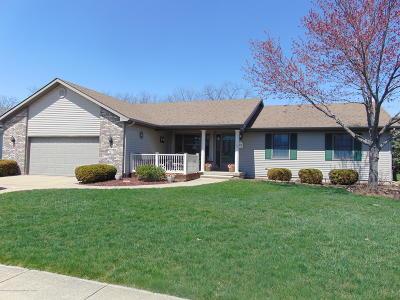 Grand Ledge Single Family Home For Sale: 727 Fieldview Drive