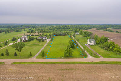 Dewitt Residential Lots & Land For Sale: 4987 W Cutler Road