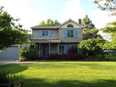 Dimondale Single Family Home For Sale: 780 Tanbark Drive