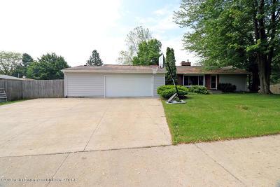 Haslett Single Family Home For Sale: 1045 Haslett Road