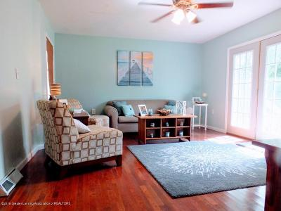Lansing Single Family Home For Sale: 242 Hume Boulevard