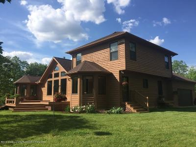 Dewitt Single Family Home For Sale: 10392 S Francis Road