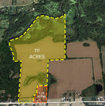 Dewitt Residential Lots & Land For Sale: Ballantine Road