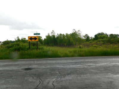 Mason Residential Lots & Land For Sale: V/L College Rd