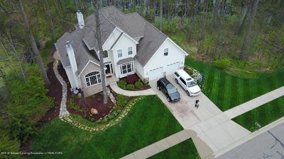 East Lansing Single Family Home For Sale: 6709 English Oak Drive