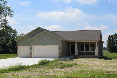 Dimondale Single Family Home For Sale: 8652 Ironstone Drive