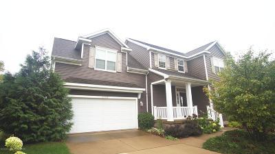 Okemos Single Family Home For Sale: 2733 Elderberry Drive