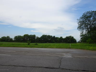 St. Johns Residential Lots & Land For Sale: 2588 S Us 27