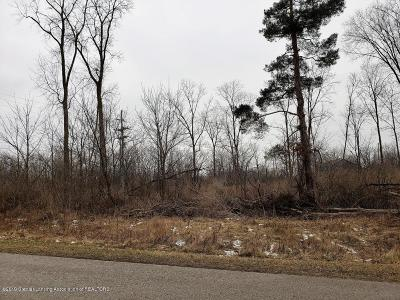 Williamston Residential Lots & Land For Sale: 3101 Pawapi Lane Lot A