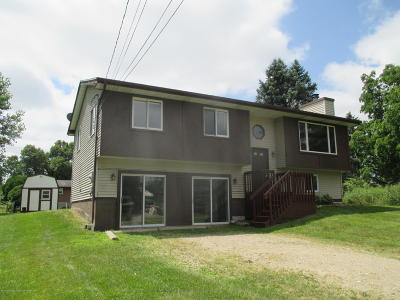 Laingsburg Single Family Home For Sale: 9226 Highland View Drive