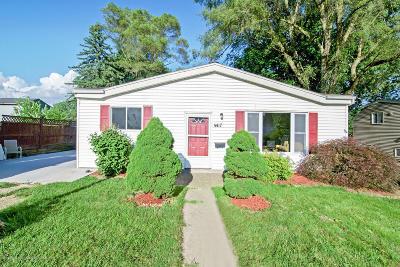 Lansing Single Family Home For Sale: 4417 Burchfield Avenue