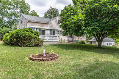Lansing Single Family Home For Sale: 15549 S Airport Road