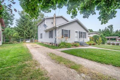 Dimondale Single Family Home For Sale: 340 W Jefferson Street