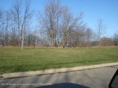 Charlotte Residential Lots & Land For Sale: 719 E Henry