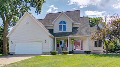 Lansing Single Family Home For Sale: 1418 Settlers Hill Drive