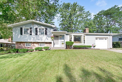 Lansing Single Family Home For Sale: 2112 Wellesley Drive