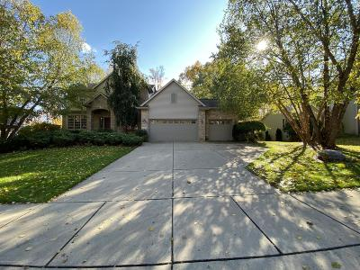 Dewitt Single Family Home For Sale: 11480 Hidden Spring Trail