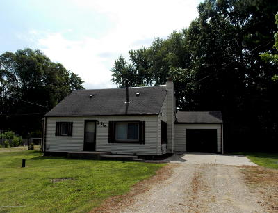 Dimondale Single Family Home For Sale: 270 Pine