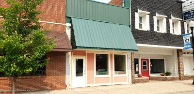 Commercial For Sale: 223 Main Street