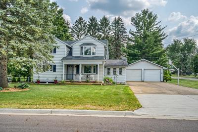 Dimondale Single Family Home For Sale: 8818 Seney Drive
