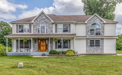 Eaton Rapids Single Family Home For Sale: 4011 Elk Ridge Drive