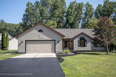 Laingsburg Single Family Home For Sale: 9455 E Lookout Point