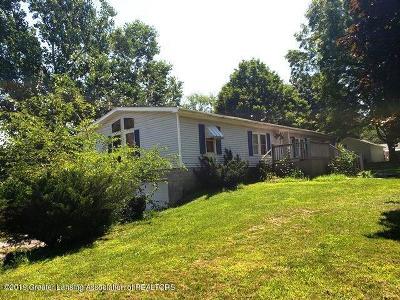Leslie Single Family Home For Sale: 425 Blair Street