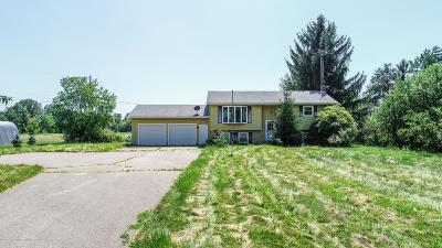 Dewitt Single Family Home For Sale: 5695 W Pratt Road