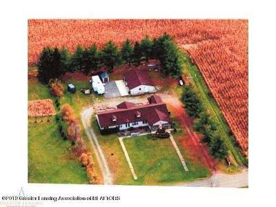 Eaton Rapids Single Family Home For Sale: 7798 E Bellevue