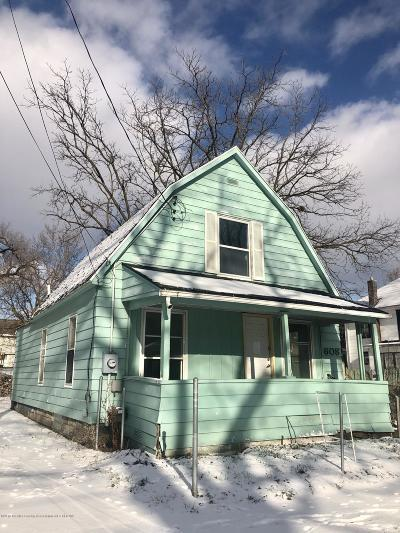 Lansing Single Family Home For Sale: 608 Brook Street
