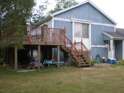East Lansing Single Family Home For Sale: 6472 Ocha Drive