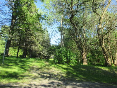 Eaton Rapids Single Family Home For Sale: 2405 Gale Road