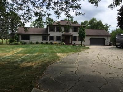 Eaton Rapids Single Family Home For Sale: 4241 Whittum Road