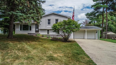 Laingsburg Single Family Home For Sale: 7875 E Circle Drive