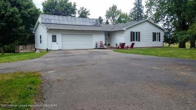 Grand Ledge Single Family Home For Sale: 2965 E Mt Hope Highway